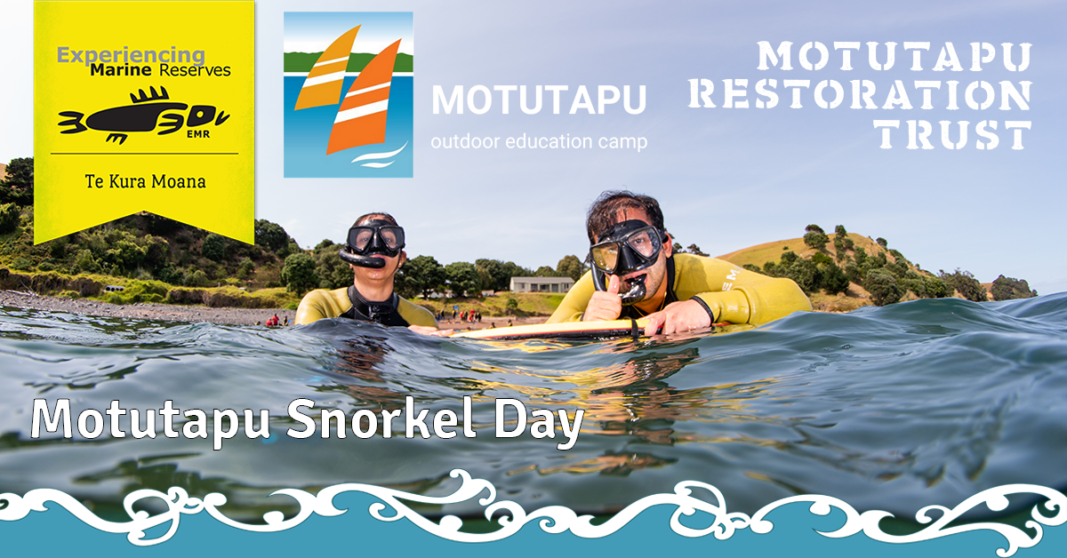Motutapu Snorkel Day 16th January 2021