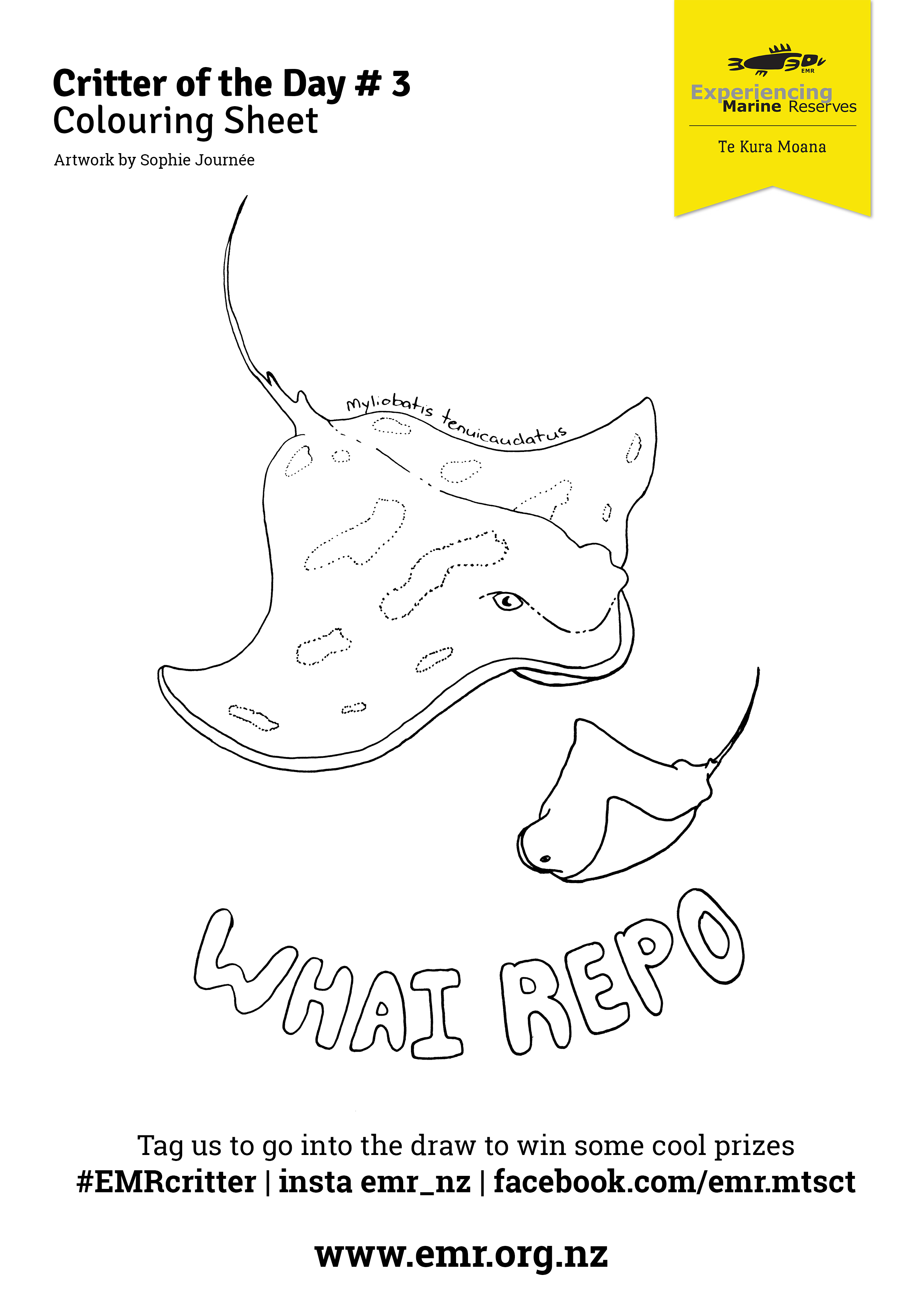 Critter of the Day wahi repo Colouring in