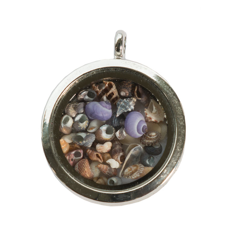 micro mollusc locket