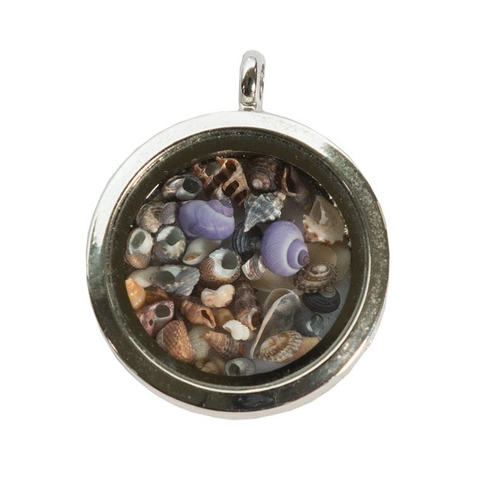 Micromollusc Locket Necklace